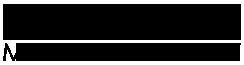 Platinum Mobility Logo